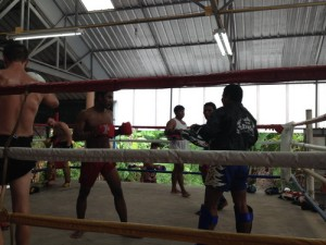 muaythaifight-3